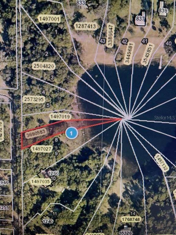Spring Lake Road, Fruitland Park, FL 34731 (MLS #G5045288) :: Blue Chip International Realty