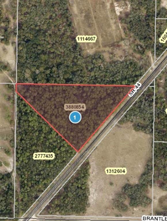 State Road 44, Eustis, FL 32736 (MLS #G5045335) :: Team Bohannon