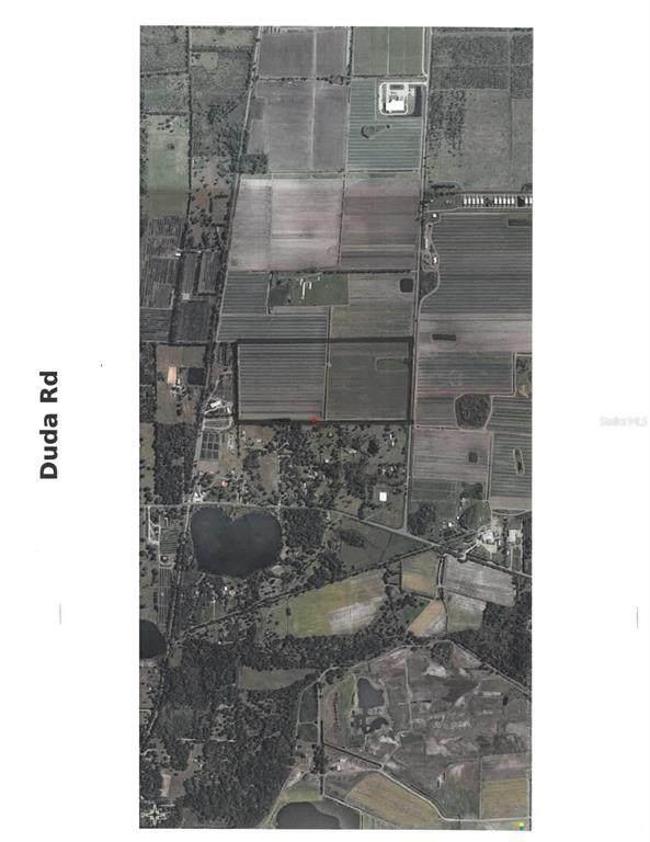 Red Farm Road, Mount Dora, FL 32757 (MLS #G5045719) :: Sarasota Gulf Coast Realtors
