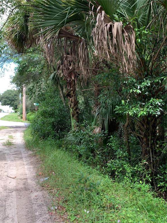 Paul Street, Sorrento, FL 32776 (MLS #G5046793) :: Vacasa Real Estate