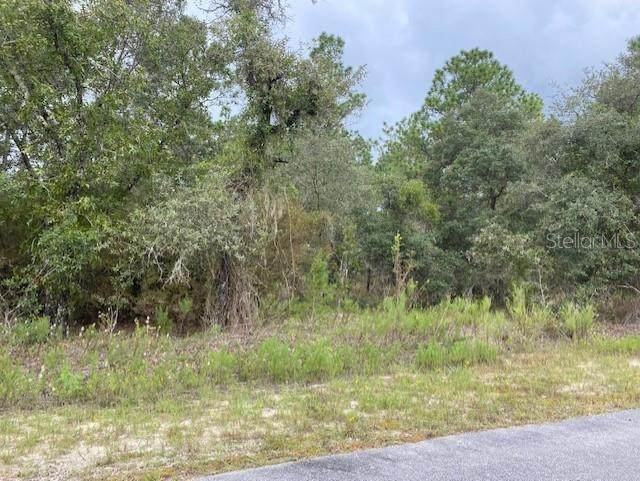 684 SW Tamiami Place, Dunnellon, FL 34431 (MLS #G5046945) :: The Hustle and Heart Group