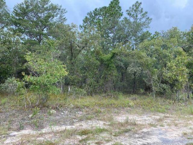 682 SW Tamiami Place, Dunnellon, FL 34431 (MLS #G5046946) :: The Hustle and Heart Group