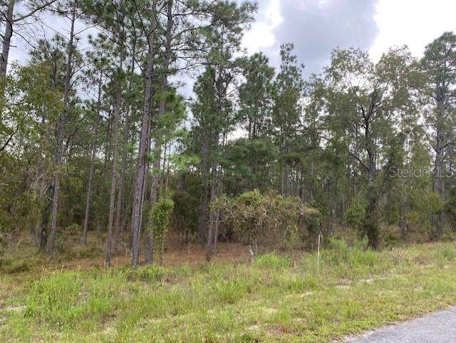 Sw Deerpark Heights Road, Dunnellon, FL 34431 (MLS #G5046947) :: The Hustle and Heart Group