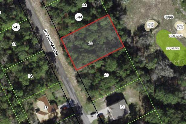 9601 N Sherman Drive, Citrus Springs, FL 34434 (MLS #G5047322) :: Everlane Realty