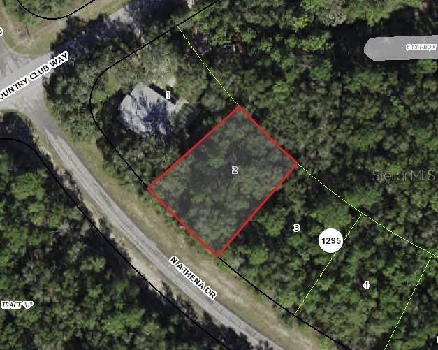 10089 N Athenia Drive, Citrus Springs, FL 34434 (MLS #G5047327) :: Delgado Home Team at Keller Williams
