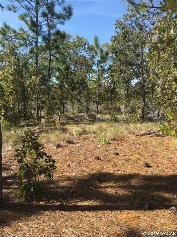 204 Marion Trail, Interlachen, FL 32640 (MLS #GC424844) :: Blue Chip International Realty