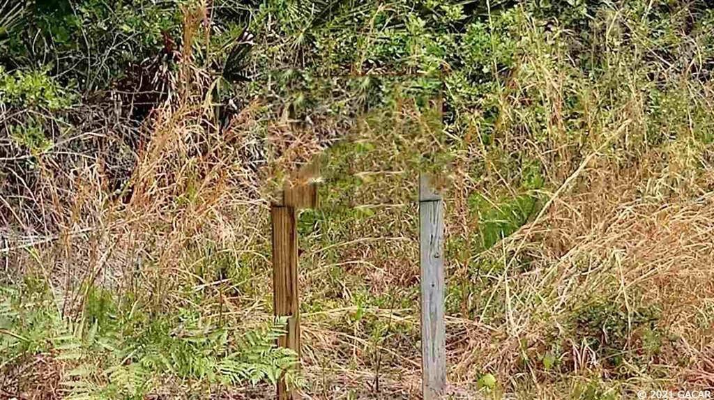 5801 County Road 225 - Photo 1