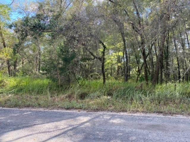 TBD SE 85TH Trail, Trenton, FL 32693 (MLS #GC500268) :: RE/MAX Local Expert
