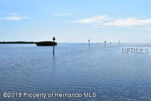 2448 Sunset Vista Drive, Hernando Beach, FL 34607 (MLS #H2400567) :: The Duncan Duo Team