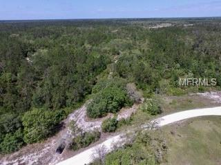 790 Buckles Road, Pierson, FL 32180 (MLS #J900103) :: Griffin Group