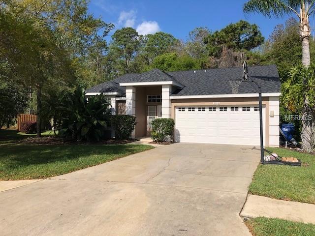 5703 Emerson Court, Palm Harbor, FL 34685 (MLS #J902845) :: Delgado Home Team at Keller Williams