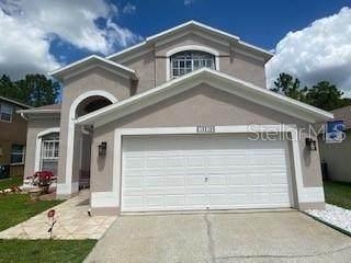 13218 Royal George Avenue, Odessa, FL 33556 (MLS #J913141) :: Team Bohannon Keller Williams, Tampa Properties