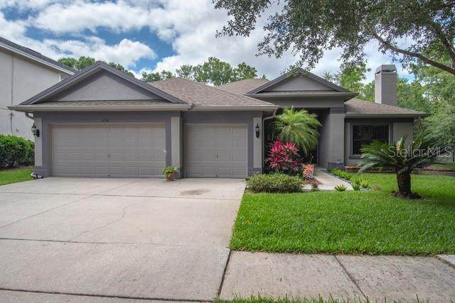 Address Not Published, Tampa, FL 33625 (MLS #J914356) :: Cartwright Realty