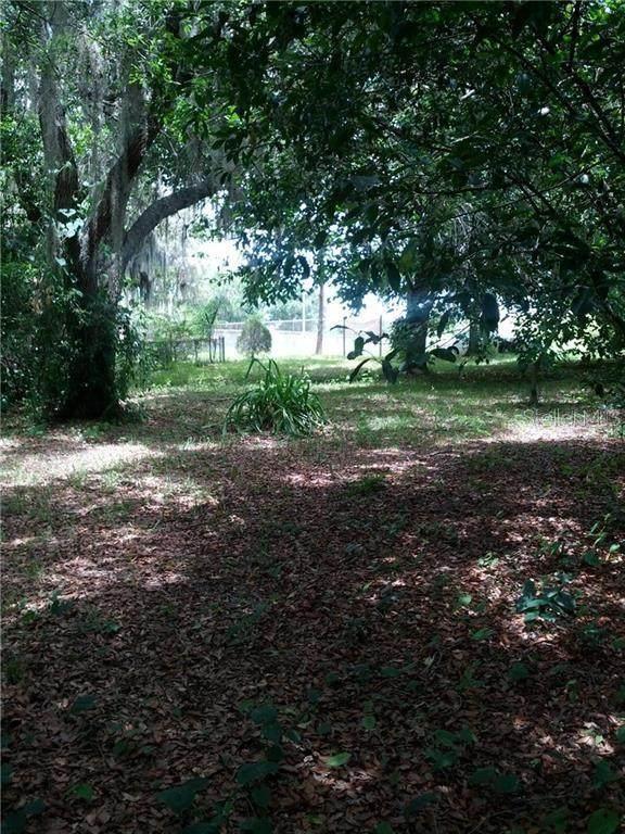 333 Briggs Avenue, Lake Wales, FL 33853 (MLS #K4900973) :: Premium Properties Real Estate Services