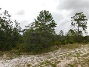 Woodstork Way, Frostproof, FL 33843 (MLS #K4901216) :: Bridge Realty Group