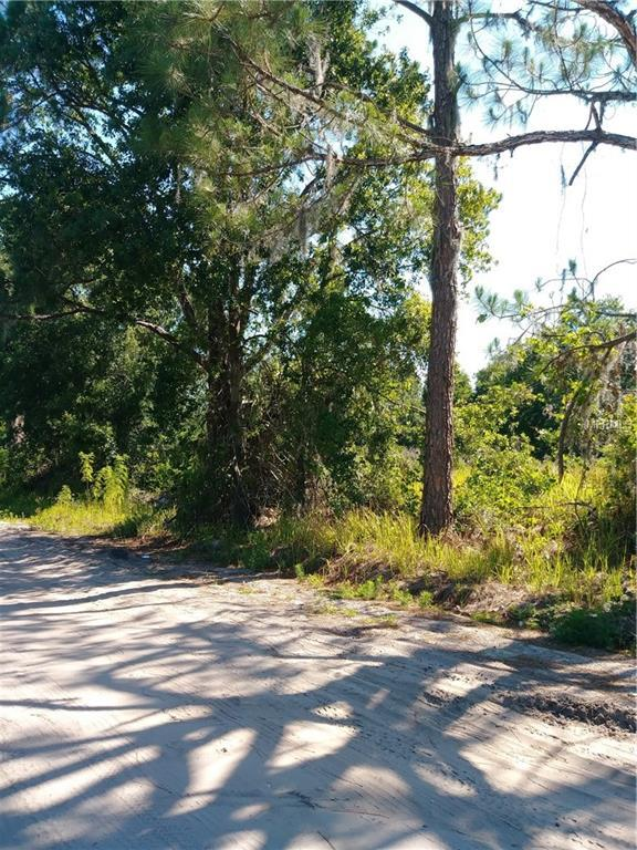 Cottage Hill Street, Lake Wales, FL 33859 (MLS #L4900750) :: Team Pepka