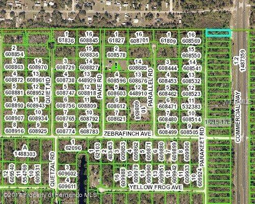 19045 Commercial Way N, Brooksville, FL 34614 (MLS #L4901217) :: Griffin Group