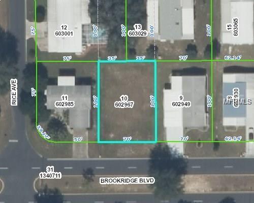 15928 Brookridge Boulevard, Brooksville, FL 34613 (MLS #L4903011) :: The Duncan Duo Team