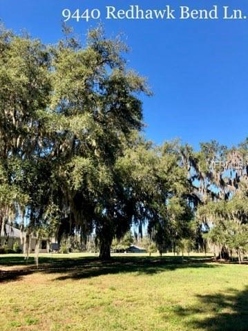 9424 Redhawk Bend Lane, Lakeland, FL 33810 (MLS #L4904980) :: The Duncan Duo Team