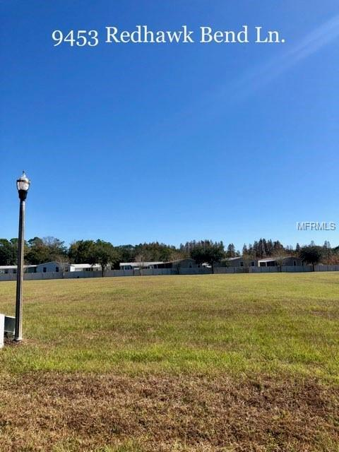9453 W Redhawk Bend Lane, Lakeland, FL 33810 (MLS #L4905021) :: Alpha Equity Team