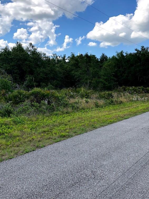 Lake Buffum Road, Fort Meade, FL 33841 (MLS #L4907464) :: Dalton Wade Real Estate Group