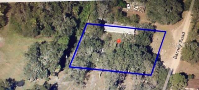 5890 Barney Road, Mulberry, FL 33860 (MLS #L4910948) :: EXIT King Realty