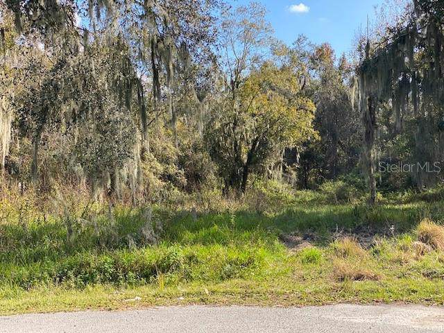 3554 Shady Brooke Court, Mulberry, FL 33860 (MLS #L4913265) :: Gate Arty & the Group - Keller Williams Realty Smart