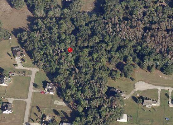 10317 Little Creek Place - Photo 1