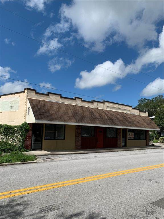 719 E Palmetto Street, Lakeland, FL 33801 (MLS #L4917036) :: Gate Arty & the Group - Keller Williams Realty Smart