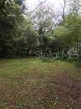 4737 Puritan Lane, Lakeland, FL 33810 (MLS #L4917263) :: Burwell Real Estate