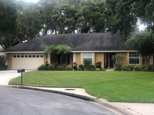 4202 Live Oak Road, Lakeland, FL 33813 (MLS #L4918180) :: Tuscawilla Realty, Inc