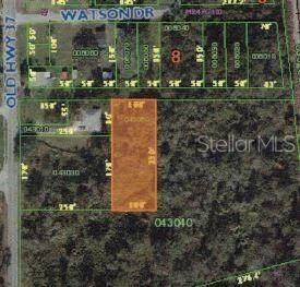 Old Hwy 37, Lakeland, FL 33811 (MLS #L4919653) :: Griffin Group