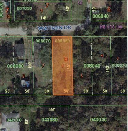 934 Watson Drive, Lakeland, FL 33811 (MLS #L4919664) :: Rabell Realty Group