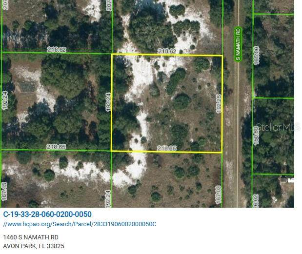 1460 S Namath Road, Avon Park, FL 33825 (MLS #L4921356) :: Premier Home Experts