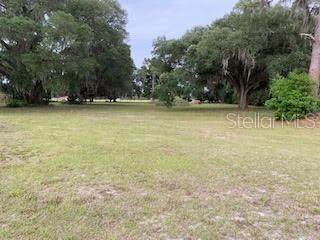 D R Bryant Road, Lakeland, FL 33810 (MLS #L4922166) :: SunCoast Home Experts