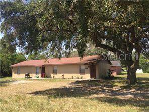 1337 E Parker Street, Lakeland, FL 33801 (MLS #L4923438) :: Carmena and Associates Realty Group