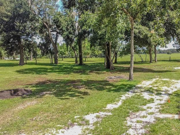 6103 Black Walnut Drive, Bartow, FL 33830 (MLS #L4924215) :: Sarasota Gulf Coast Homes