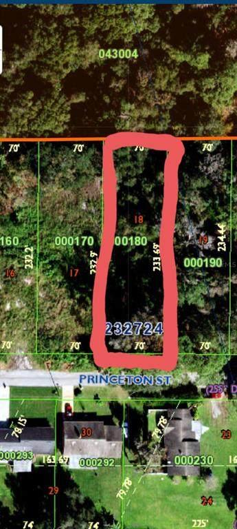 0 Princeton Street, Lakeland, FL 33809 (MLS #L4924437) :: Visionary Properties Inc