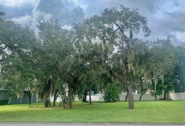 1154 Lake Deeson Woods Lane, Lakeland, FL 33805 (MLS #L4925017) :: Zarghami Group