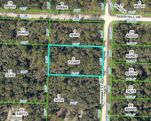 Norway Street, Webster, FL 33597 (MLS #N5916126) :: Godwin Realty Group