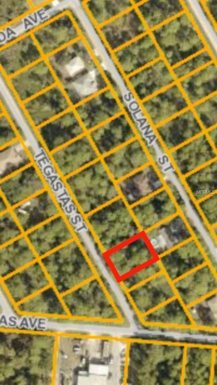 Tegastas Street, North Port, FL 34287 (MLS #N5916739) :: Godwin Realty Group