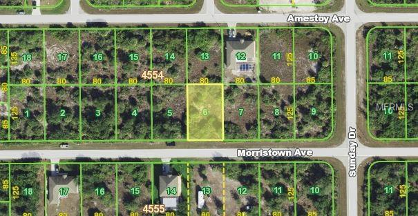 14326 Morristown Avenue, Port Charlotte, FL 33981 (MLS #N6101430) :: Griffin Group