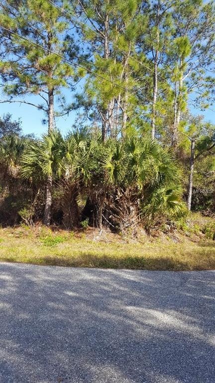 Wells Ave, North Port, FL 34286 (MLS #N6104139) :: Griffin Group