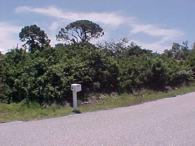 Clematis Road, Venice, FL 34293 (MLS #N6105248) :: Baird Realty Group