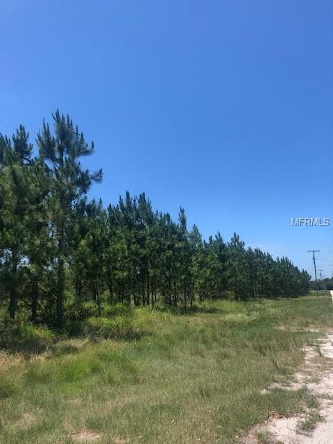 17609 Bledsoe Loop, Lithia, FL 33547 (MLS #N6105775) :: The Duncan Duo Team