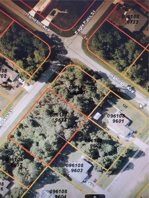 Eagle Pass Street, North Port, FL 34286 (MLS #N6106628) :: Burwell Real Estate