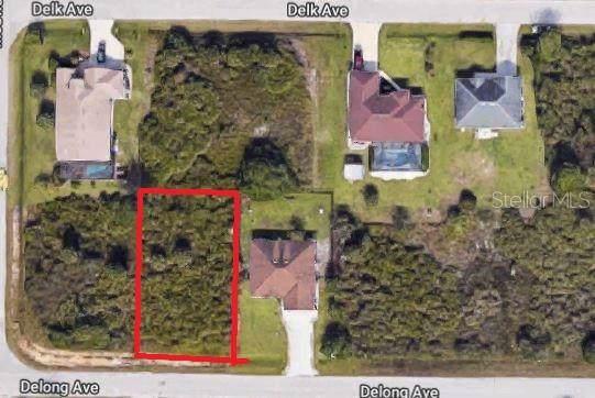 Delong Avenue, North Port, FL 34291 (MLS #N6107132) :: EXIT King Realty