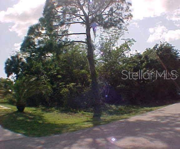 20423 Copeland Avenue - Photo 1