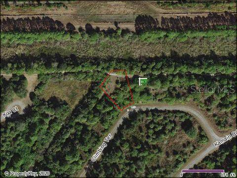 Climbing Terrace, North Port, FL 34288 (MLS #N6110265) :: Team Bohannon Keller Williams, Tampa Properties