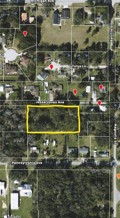 Jesse Jones Ave, San Antonio, FL 33576 (MLS #N6113391) :: Everlane Realty